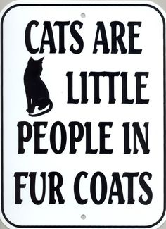 Cats are little people in fur coats