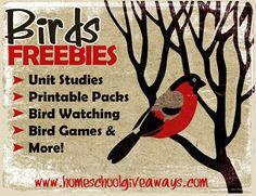 http://homeschoolgiveaways.com/2014/06/free-bird-resources-for-nature-study/