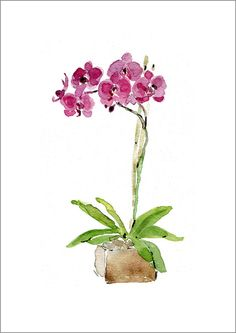 Orchid plant art print of watercolor painting by TheJoyofColor