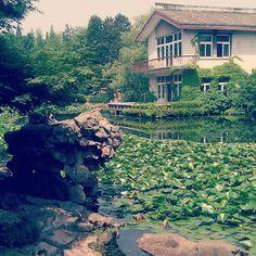 Botanical Gardens #Shanghai