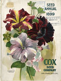 Front Cover of Cox Seed Company