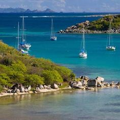 St Martin.  What a great island - half Dutch & half French.  Our family loves this place.