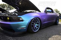 2014 AmericanMuscle Mustang Show