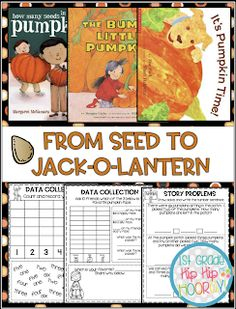 From Seed to Pumpkin! Poetry Anchor Chart, Anchor Charts, Word Work Activities, Grammar Activities, Pumpkin Facts, Writing Complete Sentences, Pumpkin Life Cycle, Nouns And Adjectives, Word Work Centers