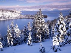 Lake Tahoe is a large and beautiful freshwater lake lies in the mountains of Sierra Nevada and a major tourist attraction in both Nevada and California. Winter Wonderland Wallpaper, Winter Wallpaper, Tree Wallpaper, Laptop Wallpaper, Emerald Bay Lake Tahoe, Winter Szenen, Winter Trees, Winter White, Lac Tahoe