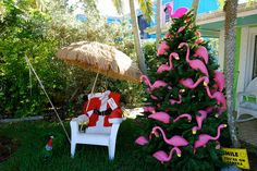 sanibel christmas | Recent Photos The Commons Getty Collection Galleries World Map App ...