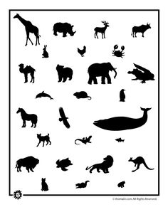 Printable Animal Templates 27 Animal Shapes Again, can be used for so many crafts! Animal Templates, Shape Templates, Stencil Templates, Stencils, Detailed Coloring Pages, Coloring Pages For Kids, Pumpkin Printable, Animal Silhouette, Silhouette Cameo