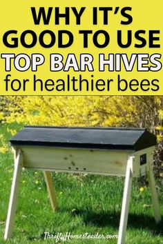 Top bar hives for healthier bees Here is why you should use top bar hives as part of your beekeeping. Doing so promotes natural bee keeping which is much healthier for bees. Read the. Honey Bee Hives, Honey Bees, Top Bar Bee Hive, Bee Boxes, Bee Hives Boxes, Bee Hive Plans, Beekeeping For Beginners, Raising Bees, Bee Do