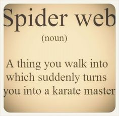 spider web: a thing you walk into which suddenly turns you into a karate master