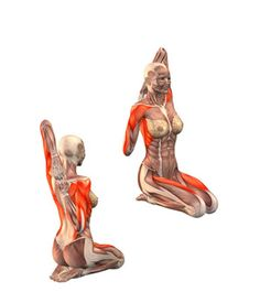 #GOMUKHA VAJRASANA Cow face pose, left hand up grab