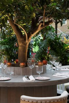 The garden at Blixen, London/ BRILLIANT RESTAURANT GARDENS