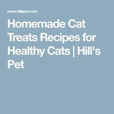 Homemade Cat Treats Recipes for Healthy Cats | Hill's Pet