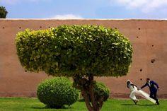 Glamorous Moroccan Wedding: The Couple:  Idia and Will ...... The Wedding:  Dar Ayniwen, Marrakech, Morocco