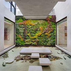 Truly unique living walls that define and enrich the spaces they inhabit Sustainable Building Materials, Sustainable Living, Bay Meadows, Menlo Park, Tropical Colors, Conceptual Design, Kew Gardens, Built Environment, Plant Design