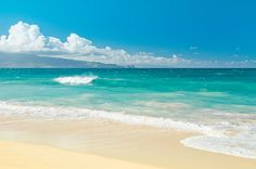 ✽ Hawaii Beach Treasures by Sharon Mau  . . ★ . . :: Use #PromoCode SEYEJH for 25.00% savings on everything throughout my store through 28 September 2015   . please note faa security watermark will not appear on products   ★  Visit my portfolio for more #tropicalflowers and #beaches #prints #pillows #showercurtains #phonecases + more . .   #Maui #Hawaii   © Sharon Mau #Photography http://goo.gl/c8lFmq  #maui #hawaii  :: . . ★ . . xo ❀ . . ✿⊱╮. ★ . . ╭✿⊰