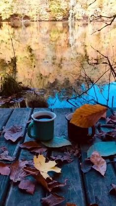 Ramadan Quran, Batman Pictures, Good Morning Inspiration, Beautiful Nature Scenes, Gifs, Autumn Aesthetic, Wallpaper Iphone Disney, Beautiful Places To Travel, Flower Pictures