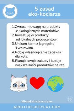 Kieruj się zdrowym rozsądkiem i stosuj się do tych 5 prostych zasada aby być dobrym opiekunem kota i jednocześnie dbać o środowisko. Więcej sposobów na bycie eko z kotem znajdziesz na moim blogu. Apollo, Lifestyle, Blog, Blogging, Apollo Program