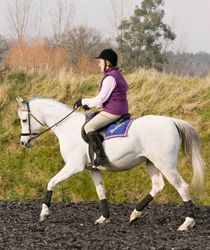 Flawless flatwork: Moving on up