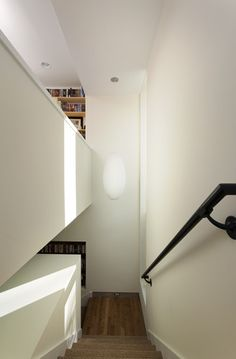 Under Tree House contemporary staircase