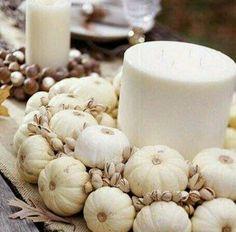 White pumpkins..