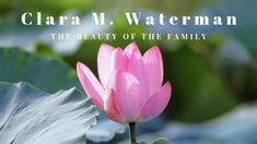Clara M. Waterman, The Beauty of the Family Healthy Lifestyle Tips, Healthy Habits, Kids Gate, Marriage Records, Spiritual Wellness, Family History, Health And Wellness, Improve Yourself, Track