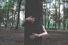 Étreindre les arbres, quel bonheur!