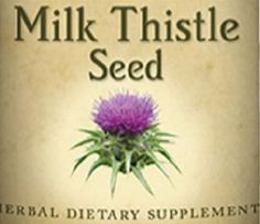 MILK THISTLE SEED All Natural Herbal Tincture for Liver Support and Protection Nutritional Dietary Supplement Herb