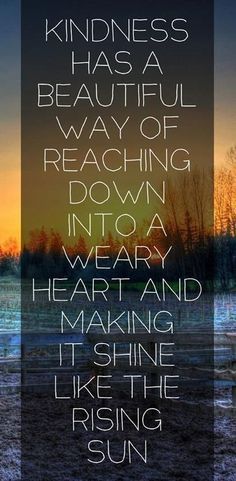 "Life lesson on kindness ""Kindness has a beautiful way of reaching down into a weary heart and making it shine like the rising sun."" Be kind Great Quotes, Quotes To Live By, Me Quotes, Inspirational Quotes, Quotable Quotes, Wisdom Quotes, Diana Quotes, Cherish Quotes, Coach Quotes"