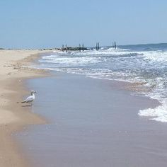 Long Island beaches...