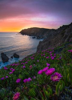 Lost in Paradise by Nicholas Steinberg / 500px California