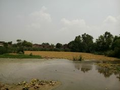 A view of the Village Jarpal