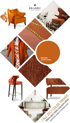 Fall 2017 Color Trends From London Fashion Week: Autumn Maple | Interior Design Inspiration @Pantone #colortrends #falltrends #colors See more inspiration: https://www.brabbu.com/moodboards/