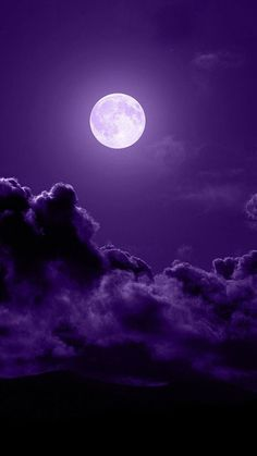 Colors ~ Black, White and Purple
