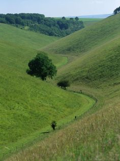 Yorkshire Wolds Way – Classic English Walking Holiday: a self-guided Walking holiday in Britain, from Discovery Travel. Yorkshire Dales, North Yorkshire, Walking Holiday, British Countryside, Kingdom Of Great Britain, England And Scotland, British Isles, Places To See, Scenery