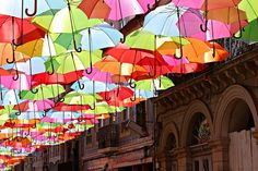 A Canopy of Colorful Umbrellas Spotted in Portugal | Colossal