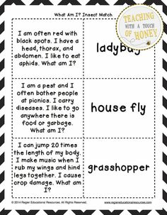 """FREEBIE! Use insect """"What Am I?"""" riddles to engage the students in your classroom! A variety of formats are provided to meet the needs of the students in your class."""