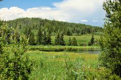 LandQuest E-Brochure Heart Lake Ranch - Vanderhoof, BC