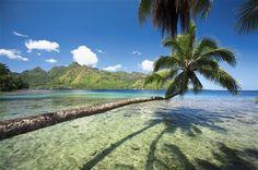 Moorea. La Polinesia, las islas de 3 colores: el azul del mar, el blanco de las playas y el verde esmeralda de sus montañas.