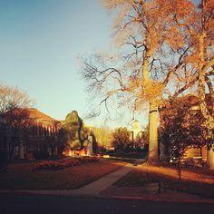 Beautiful shot of campus by kelseyrmorgan via Instagram