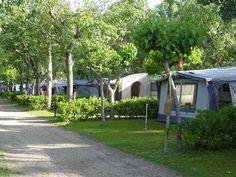 Camping Miramar: Google Local