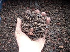 Beginner bonsai soil recipe. I've also heard of people using Oil-Dri or cat litter.