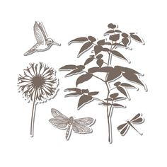 Sizzix - Hero Arts - Framelits - Die Cutting Template and Repositionable Rubber Stamp Set - Fern at Scrapbook.com $24.99