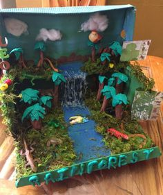Rainforest in a shoe box pre-school project!