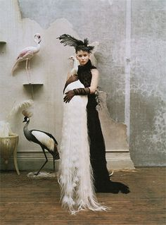 jennifer lawrence by tim walker for w mag | fashion editorial | peacock | white | feathers | flamingo | vintage | exotic birds