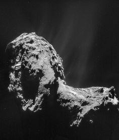 Mosaïque de 4 images du noyau de 67P/Churyumov-Gerasimenko — surnommée Tchouri — prises par la caméra de navigation (Navcam) de Rosetta, le 20 novembre 2014. On distingue les jets de gaz et de poussières qui sont à l'origine de son atmosphère, la coma. Les mesures de spectrométrie de masse effectuées par l'instrument Rosina suggèrent que l'eau qui y abonde n'est pas la même que celle de nos océans. © Esa, Rosetta, Navcam, CC BY-SA IGO 3.0