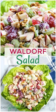 We love bringing a Waldorf Salad to a potluck because you can make the salad ahead of time and really give the dressing and the ingredients time to marinate. This provides so much flavor in every bite. For more make ahead recipes follow Easy Budget Recipes! Easy Holiday Recipes, Easy Appetizer Recipes, Best Dinner Recipes, Easy Salads, Top Recipes, Healthy Salad Recipes, Side Dish Recipes, Christmas Recipes, Appetizers