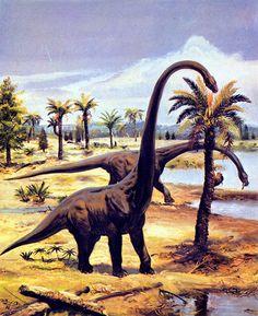 barosaurus_by_zdenek_burian_1976.jpg (1303×1600)