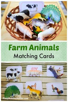 FREE farm animals matching cards for learning exactness (abstract)
