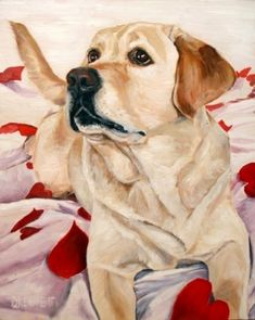 View examples of custom dog paintings by dog artist David Kennett. Custom Dog Portraits, Pet Portraits, Animal Photography, Equine Photography, Labrador Puppies, Retriever Puppies, Corgi Puppies, Painting Gallery, Watercolor Animals