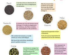 La Santé dans l'Assiette: Fiche pratique - 9 graines et leurs vertus Health And Nutrition, Eyeshadow, Diet, Healthy, Food, Affirmations, Articles, Snow, Chia Seeds